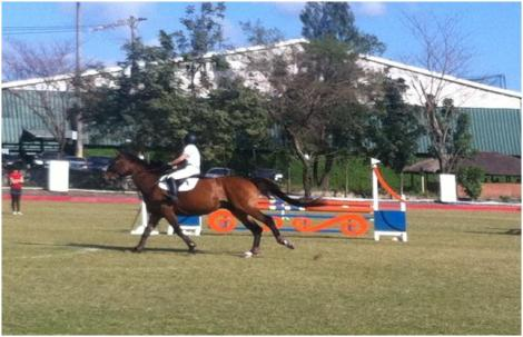 iSportlife Equestrian Cup 3